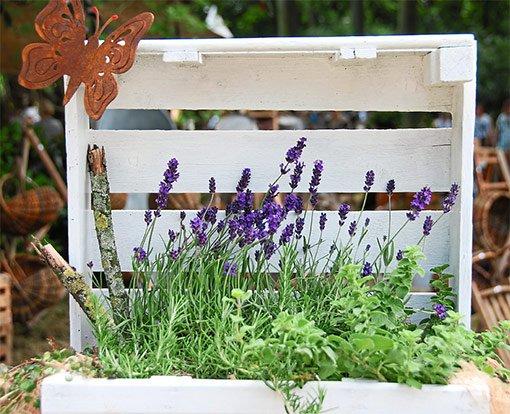 garten balkon lavendel auf dem balkon oder der terrasse garten und balkon schwarzw lder bote. Black Bedroom Furniture Sets. Home Design Ideas