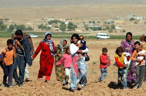 Milchschwemme in der Türkei