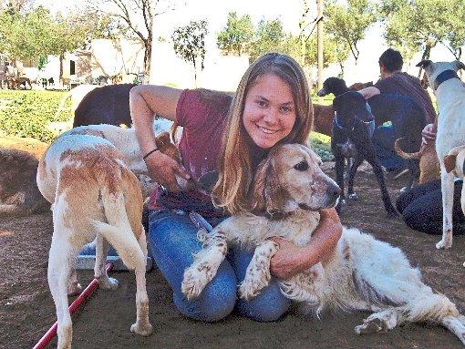 Villingen Schwenningen Spanische Hunde Finden Ein Zuhause Villingen Schwenningen