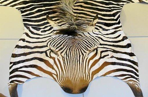 zebrafell kaufen