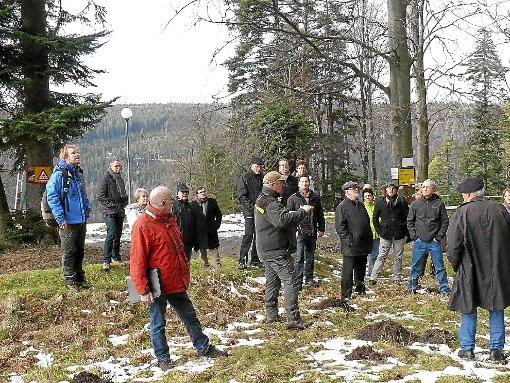 Bad Wildbad: Baumwipfelpfad wird gut angenommen - Bad Wildbad ...