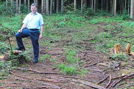 Hobby-Waldbesitzer Reinhold Renz steht auf seiner fast leeren Parzelle, auf der vor drei Monaten noch Fichte an Fichte stand. Hochstämme im Hintergrund erinnern noch daran.  Fotos: Ranft Foto: Schwarzwälder Bote