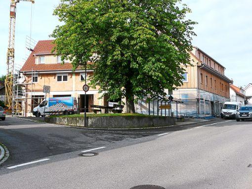 An der Gesamtsanierung des Schwanengebäudes wird noch fleißig gearbeitet. Links sieht man den neuen Bauflügel. Foto: Eitel
