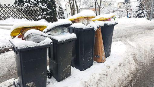 Eingeschneit: Diese Tonnen stehen schon seit geraumer Zeit in Rottweil am Straßenrand.  Foto: Otto