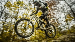 Woodpecker-Trail in Degerloch: Waghalsige Downhill-Videos aus Stuttgart
