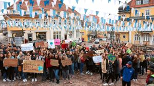 Donaueschingen: Fridays for Future: Jugendliche skandieren bei Demonstration Unmut