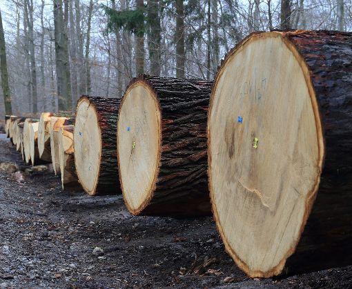 Holz von der Zollernalb ist nach wie vor gefragt, und vorerst soll es  weiterhin vermarktet werden wie gehabt.  Foto: Wolf Foto: Schwarzwälder-Bote