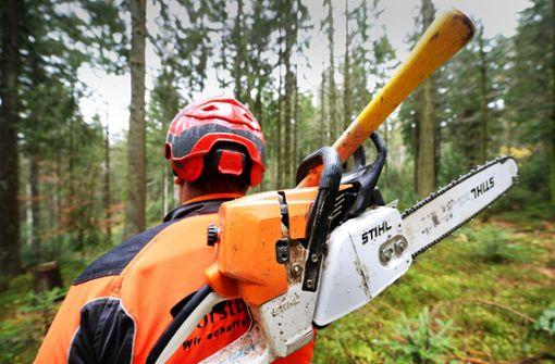Wegen Baumfällarbeiten ist die B 28a mehrere Tage gesperrt. (Symbolbild) Foto: dpa