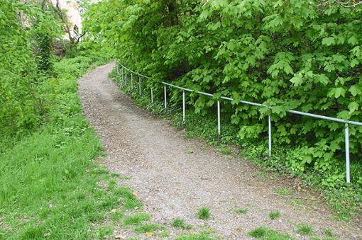 Dieser Weg von der Pfingsthalde zum Stadtgraben wird – wie andere Fußgängerverbindungen  auch – nun saniert.  Foto: Hertle Foto: Schwarzwälder Bote