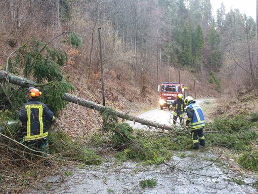Auch an der Langensteige in Altoberndorf hielten Bäume dem Sturm nicht Stand. Foto: Feuerwehr