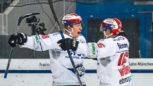 Wild Wings besiegen Meister mit 5:2