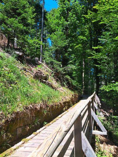 Ein Steg zum Aufstieg auf den Sommerberg.  Foto: Bechtle Foto: Schwarzwälder Bote