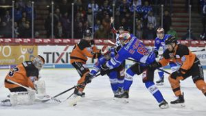 Eishockey: Liveticker: Wild Wings vs. Grizzlys Wolfsburg