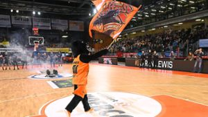 Basketball: Panthers starten am 16. Oktober