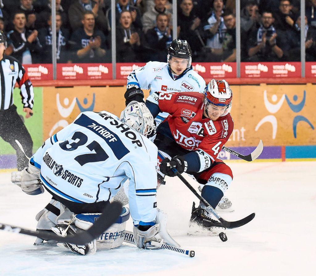 Eishockey Wild Wings