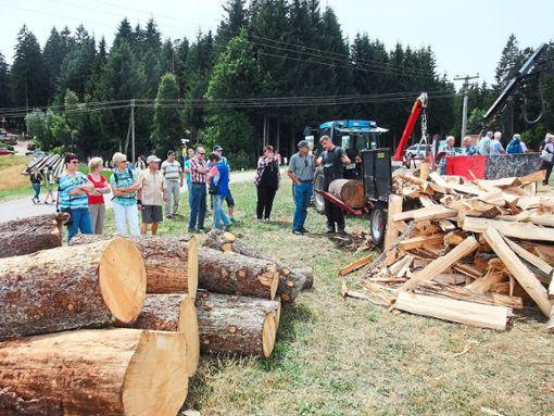 Ein herausragendes Ereignis in der Geschichte des Vereins: der Erlebnistag Landwirtschaft 2015  Archiv-Fotos: Borho Foto: Schwarzwälder Bote