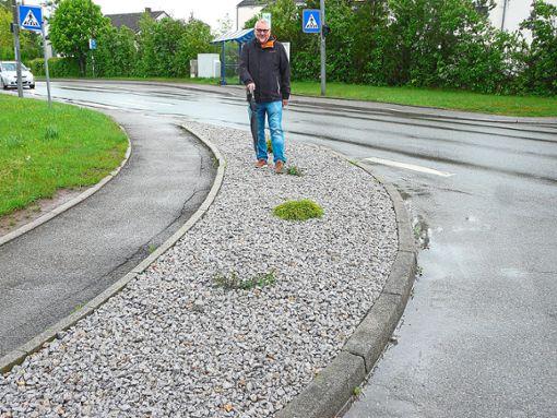Auch der Unterhaugstetter Naturfreund Hartmut Hornbacher bedauert die Beseitigung der Anpflanzung.   Foto: Eitel Foto: Schwarzwälder Bote