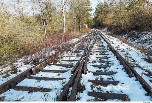 Das Land unterstützt die Reaktivierung alter Bahnstrecken wie  der Württembergischen Schwarzwaldbahn – hier bei Althengstett.  Archiv-Foto: Fritsch Foto: Schwarzwälder Bote