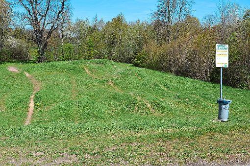 Die Strecke ist teilweise mit Gras überwachsen und kaum mehr nachzuvollziehen. Auch bei den Sprüngen könnte man etwas tun, meint Alexander Jungkind.   Foto: Cools