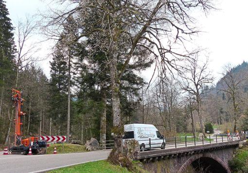 Die Guldenbrücke wird am Dienstag und Mittwoch für den Verkehr gesperrt.    Foto: Bechtle