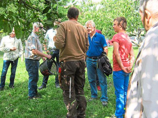 Im Lehrgarten des Obst- und Gartenbauvereins Rosenfeld informiert Michael Haller über den Sommerschnitt.  Foto: May Foto: Schwarzwälder Bote