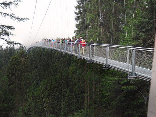 Brückenvater Günter Eberhardt plant auch in Todtnau eine Hängebrücke. Foto: Mutscher