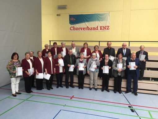 13 Sängerinnen aus Sprollenhaus (mit weinrotem Oberteil) wurden für 40 Jahre aktives Singen geehrt  Foto: Verein Foto: Schwarzwälder Bote