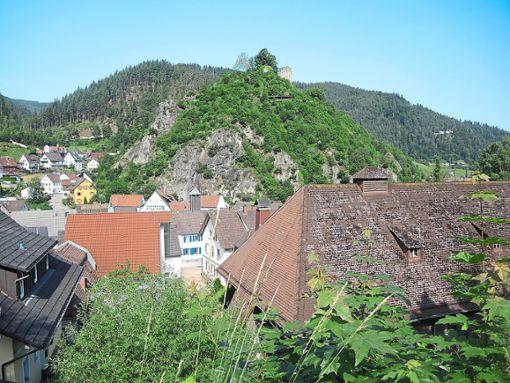 Die Konzeption des Schlossbergs beschäftigt den Gemeinderat schon seit einigen Jahren.  Foto: Jehle Foto: Schwarzwälder Bote