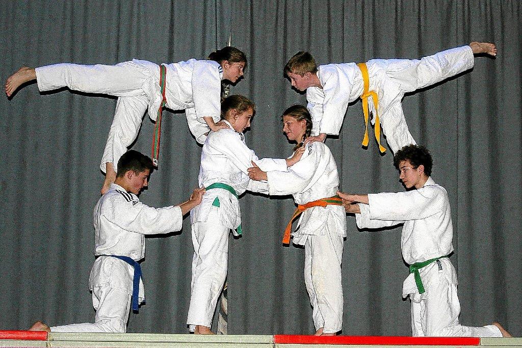 Bildergebnis für Judo Show Sportparty Villingen