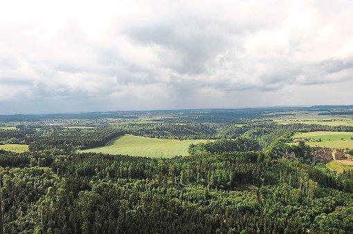 Im Gewann Esch bei Rottweil soll das neue Großgefängnis entstehen. Offen ist bislang, wie es aussehen soll. Foto: Nädele