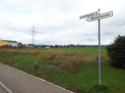 Die Wiesen nördlich der Straße Am Bangraben werden mit einer weiteren Straße erschlossen.  Foto: Schnurr Foto: Schwarzwälder-Bote