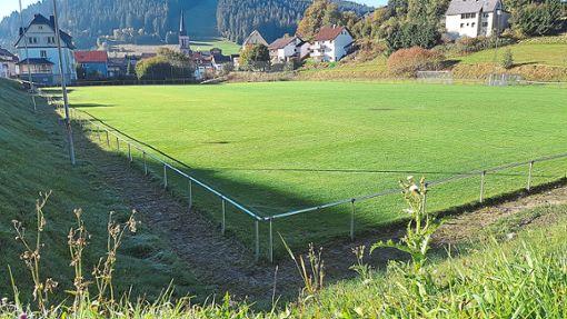 Obwohl der Sportplatz nicht zusätzlich beregnet wurde, erstrahlt er in saftigem Grün. Offensichtlich hat der morgendliche Tau dem Rasen genug Feuchtigkeit mitgegeben, um in den niederschlagsarmen Monaten nicht zu verdorren.   Foto: Reutter