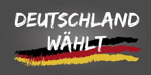 Enttäuschte Gesichter bei CDU und SPD, Jubel bei FDP und AfD: Bei der Bundestagswahl gab es einige mehr oder weniger große Überraschungen. a href=http://www.schwarzwaelder-bote.de/bundestagswahltarget=_blankstrongZum Special/strong/abr Foto: FotoIdee/  Shutterstock