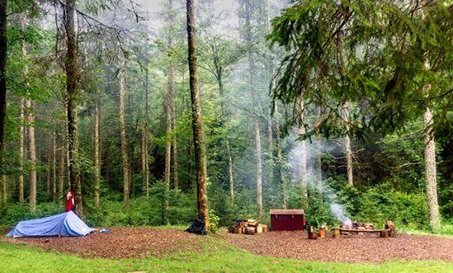 Das Wildniscamp Gutellbach zwischen Kniebis und Baiersbronn: Und einsam raucht das Feuer.   Foto: Faltin