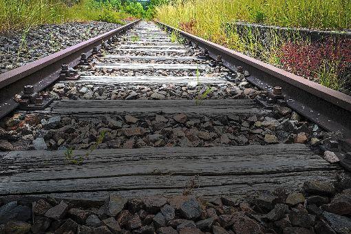 Das neue Zauberwort heißt Metropol-Express und nährt Nagolds Hoffnungen auf eine verlässliche Verbindung gen Stuttgart. Foto: Fritsch