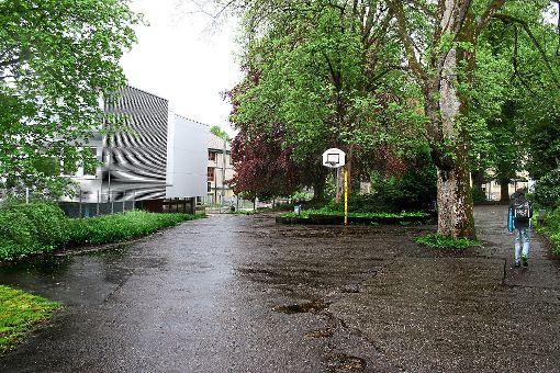 Foto: Danner Foto: Schwarzwälder-Bote