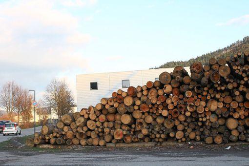 Im Haslacher Mühlegrün wird Käferholz gelagert. Foto: Privat