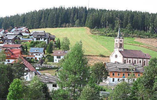 Das Rohrbacher Baugebiet Reibschenberg soll erweitert werden. Doch die Preisangebote für die Erschließung sind Stadtverwaltung und Gemeinderat zu teuer.    Foto: Liebau Foto: Schwarzwälder-Bote