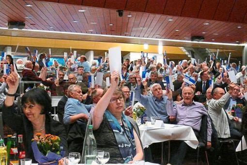 Mit ihren Kärtchen geben die Vertreter ihre Stimmen ab.   Foto: Hauser Foto: Schwarzwälder Bote