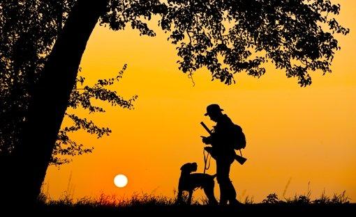 Ein Jäger spaziert mit seinem Hund im Sonnenuntergang. Ganz so idyllisch ist die Ausübung der Jagd nicht immer. Oft müssen die Waidmänner auch nachts ausrücken, um Unfallwild von den Straßen zu beseitigen. Foto: dpa