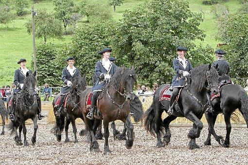 Stattliche Pferde, stolze Reiterinnen: Die Show mit den Friesenpferden auf dem Reitplatz neben dem Festzelt auf dem Haldenhof war beeindruckend und unterhaltsam. Foto: Lenski
