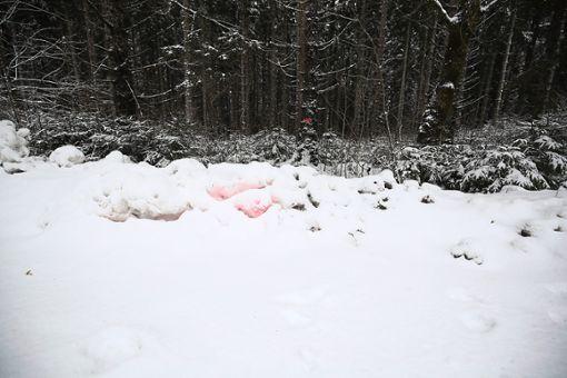 Am Tatort erinnert kaum mehr etwas an die tragischen Ereignisse. Foto: Eich