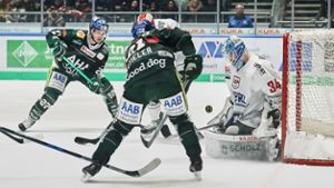 Eishockey: Liveticker: Wild Wings gegen Augsburger Panther