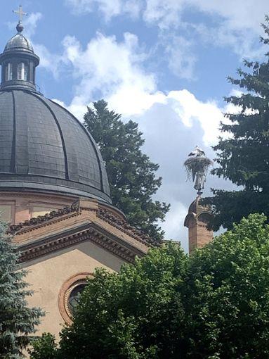 Auf der rechten Seite der Gruftkirche haben Störche auf dem Friedensengel ein Nest gebaut.  Fotos: Jakober Foto: Schwarzwälder Bote