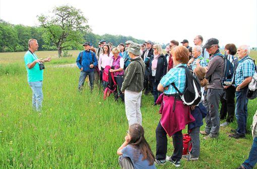 Franz Debatin erläutert die Flächenkäufe des Nabu Hambrücken.  Foto: R. Fischinger Foto: Schwarzwälder Bote