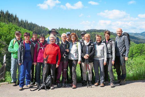 Die Wanderer genießen während der Tour immer wieder tolle Ausblicke.  Foto: Verein Foto: Schwarzwälder Bote