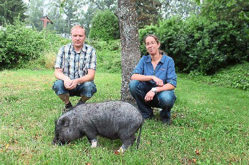 Thomas und Tanja Mandler führen den ersten Tierrettungsdienst im Zollernalbkreis. Zu ihren vielen Tieren gehört auch Hausschwein Schnitzel.  Foto: Müller Foto: Schwarzwälder-Bote