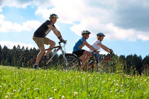 Loßburg hat den Beitritt zur Nationalparkregion beschlossen. (Symbolfoto) Foto: Loßburg Information
