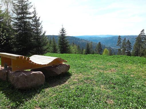 Mit Himmelsliegen wertete  der Verein Tourismus, Handel und Gewerbe in den Ortsteilen von Schömberg markante Aussichtspunkte und Erholungsräume auf.  Foto: Stocker Foto: Schwarzwälder Bote