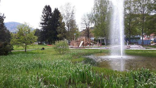 Wir suchen die schönsten Leser-Fotos zur Gartenschau in Bad Herrenalb. Foto: Matisowitsch